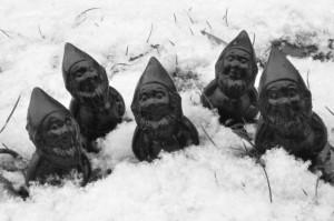 Martin le coquin sous la neige