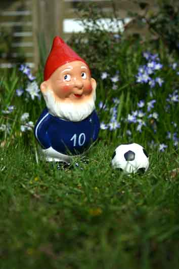 Martin se pr pare pour la coupe du monde de football for Acheter nain de jardin